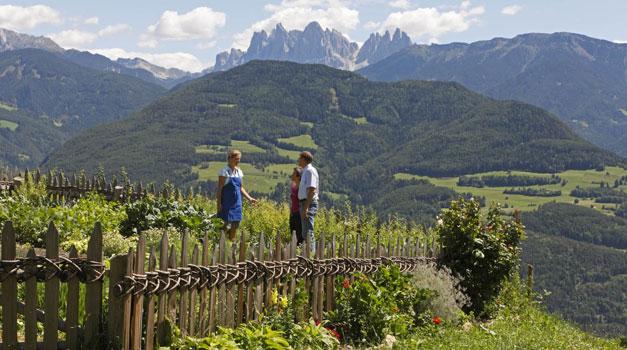 Zomervakantie Op De Boerderij In Zuid Tirol Roter Hahn