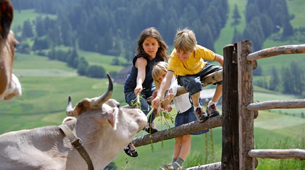 Uw Vakantie Op Maat Op Een Boerderij In Zuid Tirol Roter